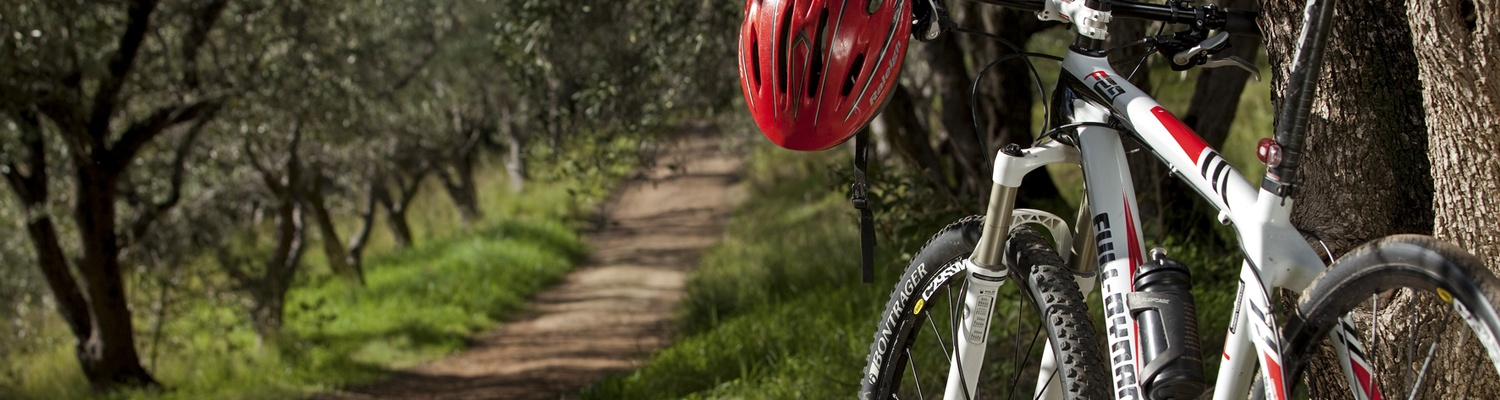 Cycling through the Olive Grove at Cascade Country Manor