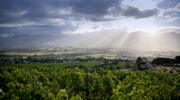 Paarl Valley in early morning sunlight